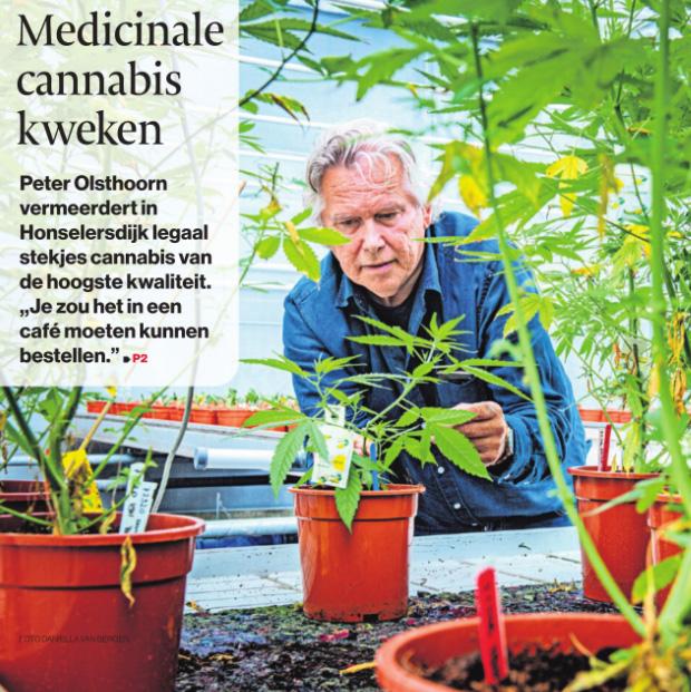 190609 Medicinale cannabis kweken