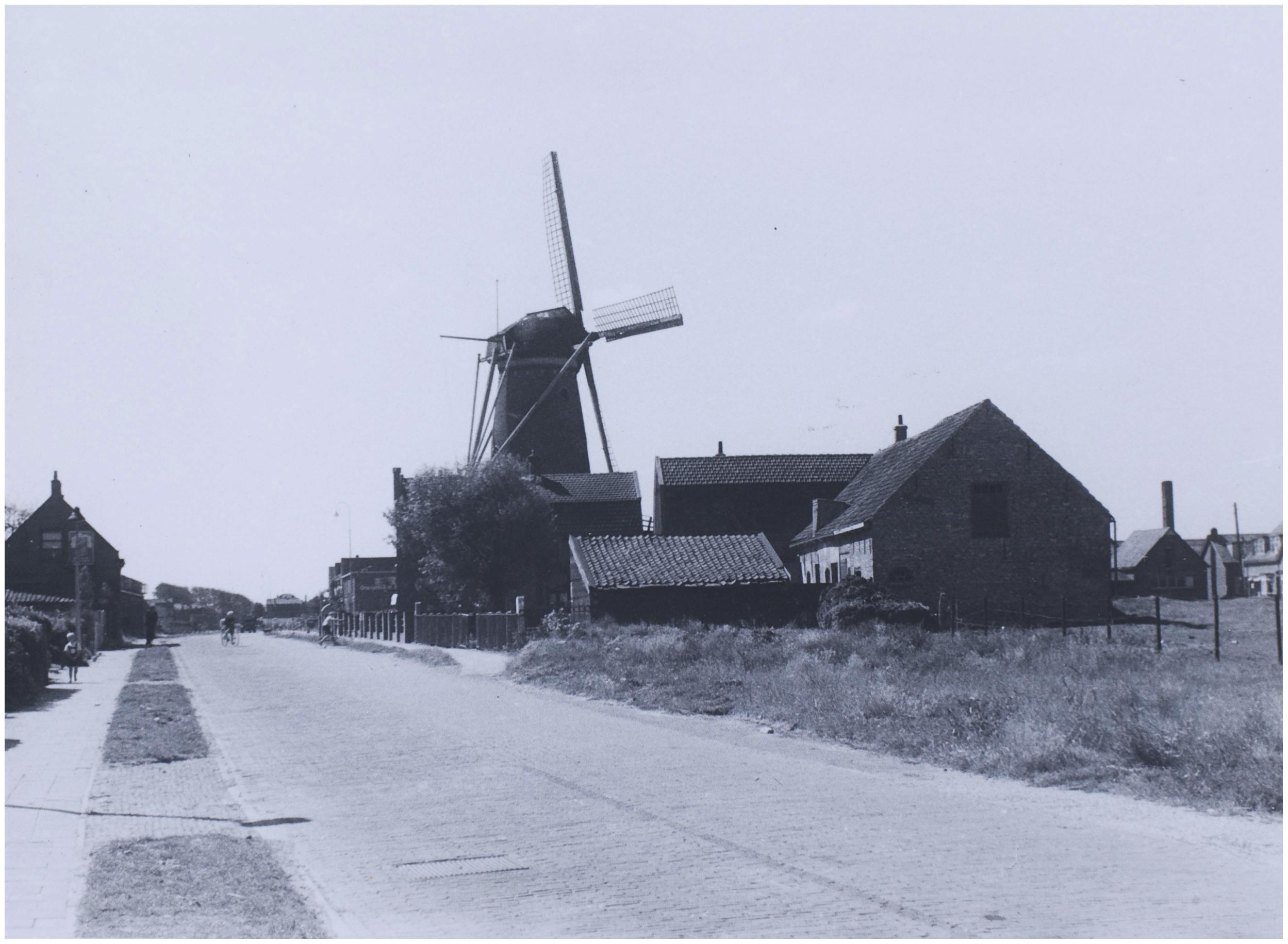 De Monsterse Haagweg en de molen Juli 1945  Foto HAW